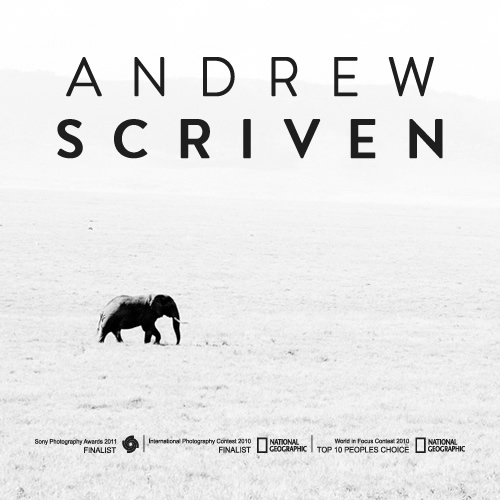andrew-preview